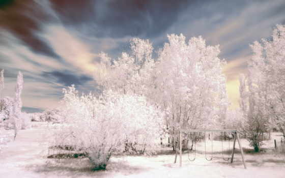 winter, снег, trees Фон № 95983 разрешение 1920x1200