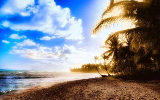 берег, free, sunny