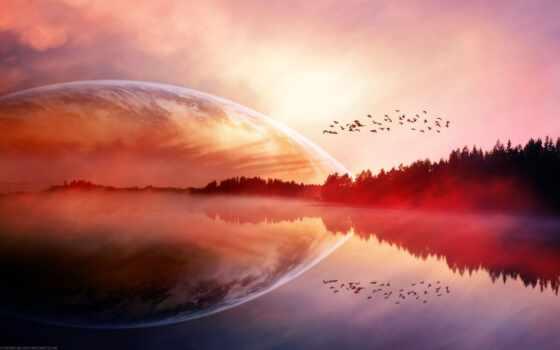 красный, птица, ocean,, остров, экран, туман