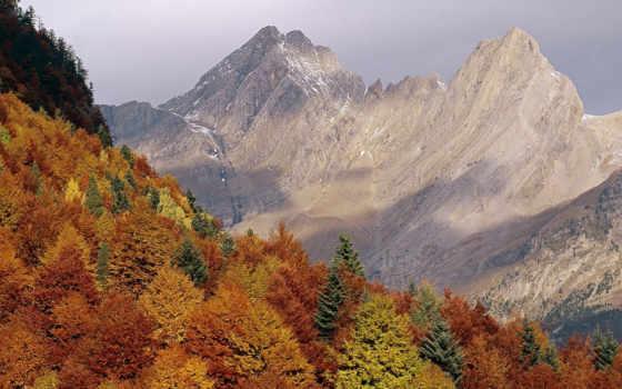 pyrenees, они, мира, довольно, системами, другими, горными, молодые, горы, сравнению, сформировались, но, альп, же, раньше,