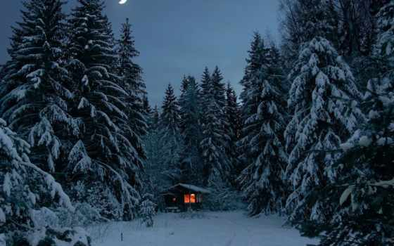 winter, lodge, луна, огни, снег, лес, лесу, сказочный, зимой,
