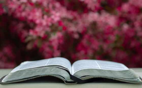 tamil, сообщение, christian, roman, lord, знамя, short, church