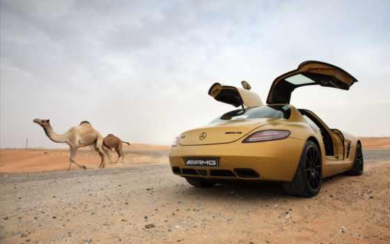 mercedes, benz, sls, пустыне, amg, верблюды, пустыни, пустыня, gold, camel,