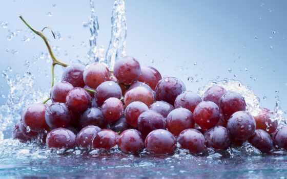 water, плоды, виноград, photos, stock, berries,
