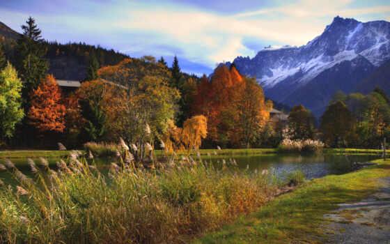 осень, горы, деревья