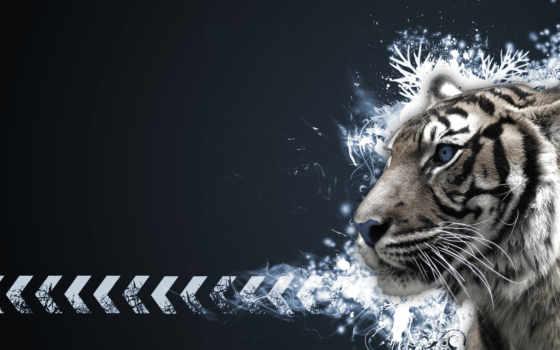 тигр, телефон, сибирские
