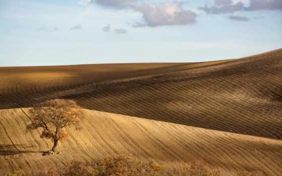 margin, природа, taustapildid, холмы, дерево, небо, italian, monti, трава, tasuta,