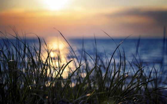 закат, природа Фон № 22530 разрешение 2560x1600