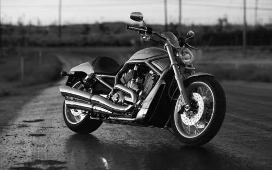 bike, мотоцикл, мотоциклы, harley, широкоформатные, дорога, davidson, white, харлей, black, yamaha,