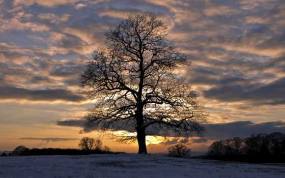 winter, снег, trees, закат, вечер, поле, небо, desktop, preview, страница,
