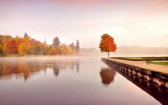 осень, iphone, природа, люблю, тебя, листва, лес, красивые, за, пасть,