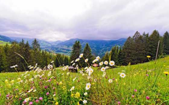горы, природа, швейцария