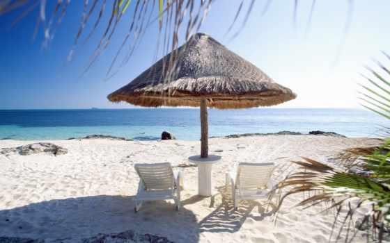 море, пляж, фотообои, песок, взгляд, пальмы, пляжный,