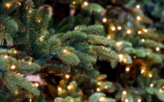 новый год, decoration, мяч, палуба, елка, elochnyi, отображаться, wooden