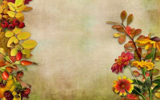 daily, листья, осень