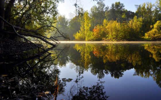 природа, озеро, деревя