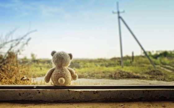 toy, мишка, настроения, природа, медведь, поле, растения, настроение, brunette, девушка,