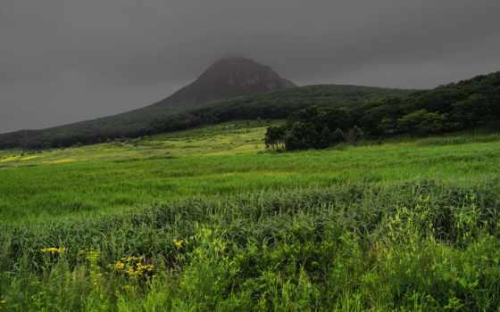 поле, зеленое, против, грозой, дек, долина, природы,
