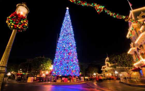 елка, новый год, тюмень, год, new, площадь, рождественский