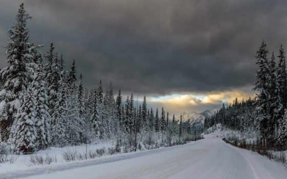горы, природа, лес Фон № 79478 разрешение 1920x1200
