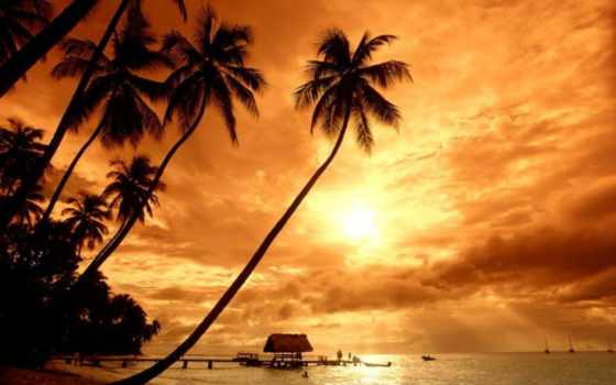 закат, красивый, вас