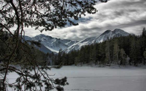 горы, лес, снег, winter, природа, full, заснеженные,