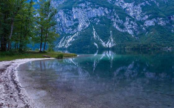 bohinj, озеро, бер, zum, see, und,