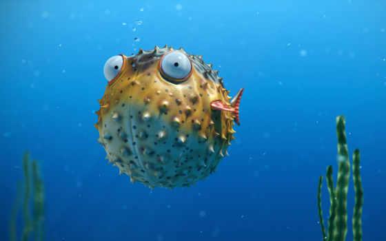 fish, мяч, пузырьки, море, свет, шипы, pisces, algae,