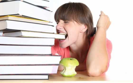 экзамена, сдачей, экзаменов, сам, примет, сдаче, новости, советов, этого, материалы,