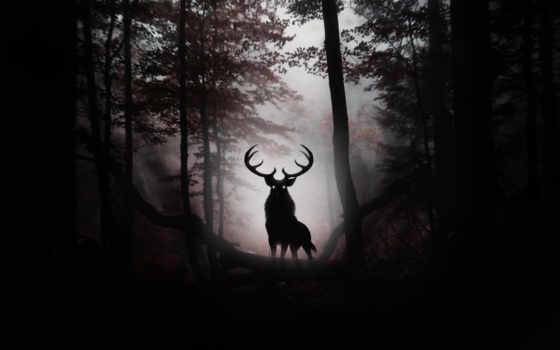 лань, рога, лес, art, animal, лесу, стоит,