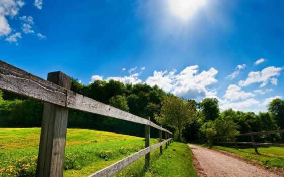 summer, природа, droidiris, sunny, зелёный, ut,