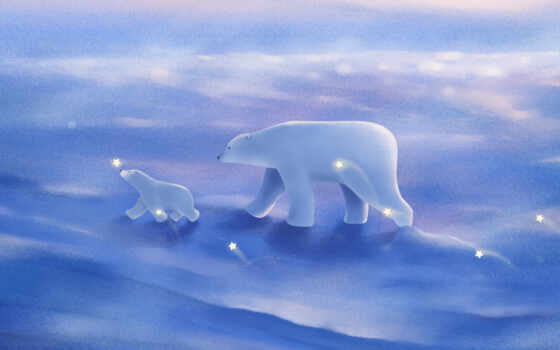 медведь, polar, animal, семья, funny, детёныш, see