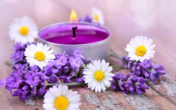 cvety, lavender, ромашки, свечи, белые, свеча, огонь, лаванды,