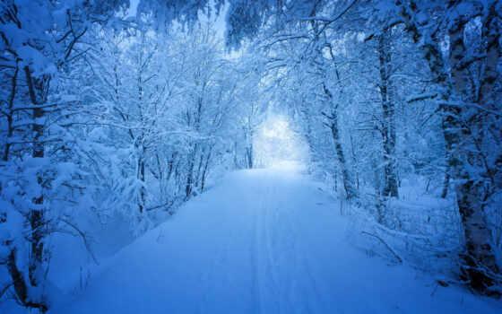 снег, winter, fifth, природа, measurement, app