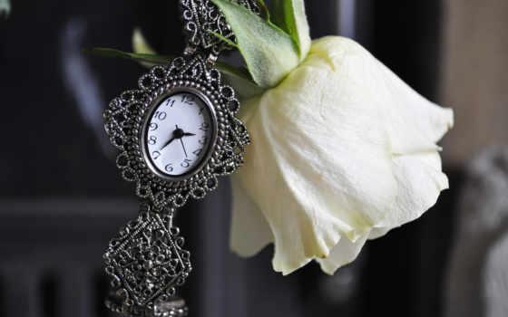 роза, white, часы