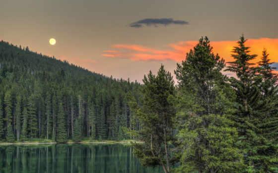 лес, канада, природа, гора, albert, луна, альберта, озеро, коллекция