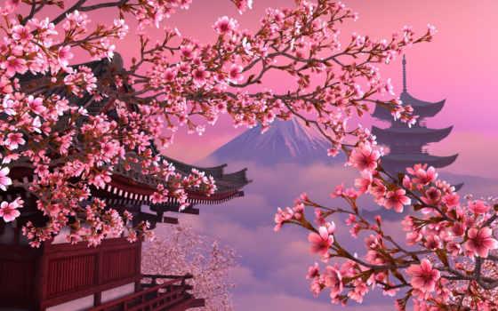Сакура, япония, розовое