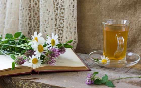 чай, блюдце, книга
