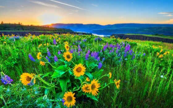 природа, природы, горы