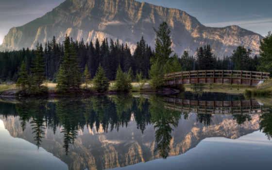 природа, высоком, горы, trees, мост, осень, ирландский, качестве, лес,