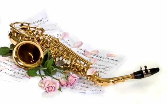 саксофон, розы, лепестки, white, ноты, цветы,