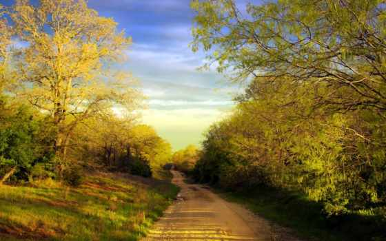 country, дорога, summer, весна, фон, trees, desktop,