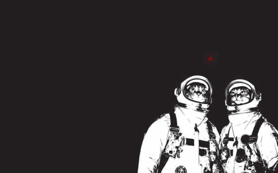космонавты, cat