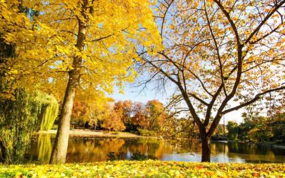 осень, природа, горы