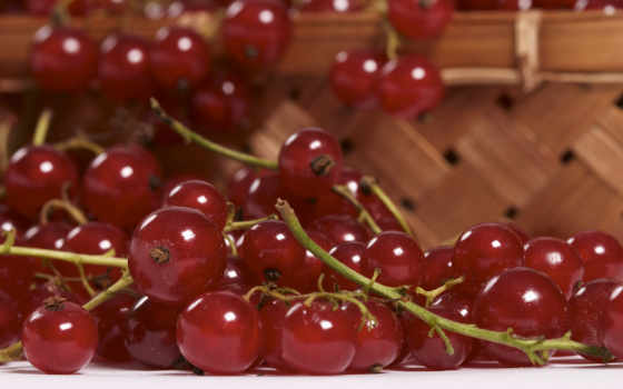 фрукты, широкоформатные, смородина, ягоды, name, currently, разрешения, доступные, рейтинг,