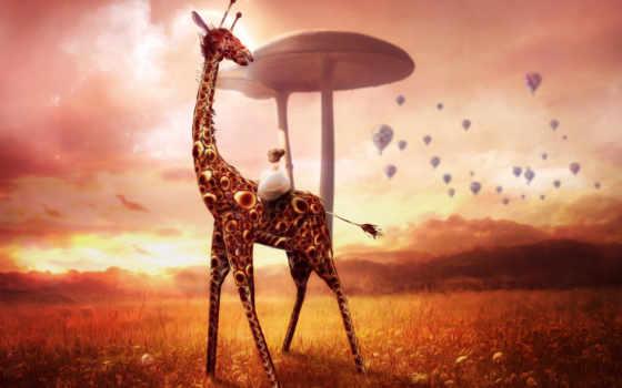жираф, девушка, сказочный, высококачествен,