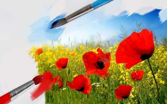 кисти, art, поле, маки, красные, бумага, краски, белая, цветы, небо,