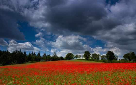 природа, природы, красавица, наша, прекрасная, небо, великолепная, яркие, дек, sports, flickr,