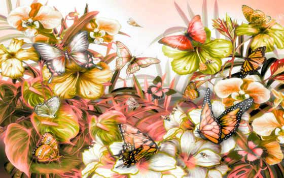 cvety, природа, бабочки, разноцветные, листва, лугу, опыляют, бабочка, daily, красивые,