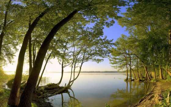 лес, озеро, природа Фон № 77100 разрешение 2560x1600